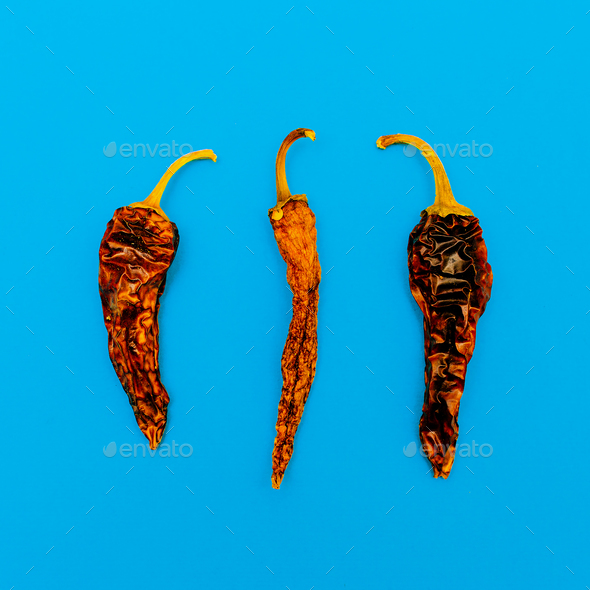 Dried Chile pepper. Minimal art design - Stock Photo - Images