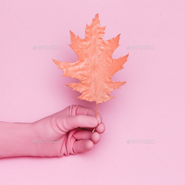 Autumn painted leaf and hand. Minimal art design - Stock Photo - Images