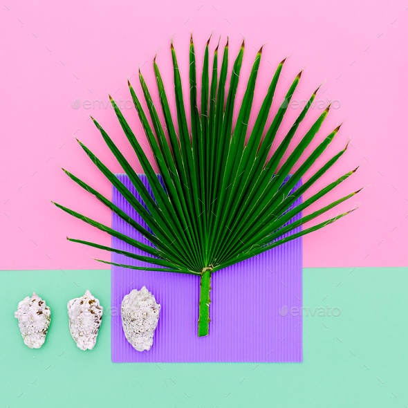 Shells and palm trees. Vacation concept. Minimal art - Stock Photo - Images