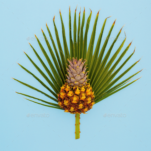 Pineapple and palm leaf. Vacation concept. Minimal art - Stock Photo - Images