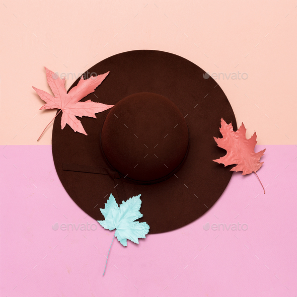 Fashionable felt hat for the lady. Spring. Style. Concept Minima - Stock Photo - Images