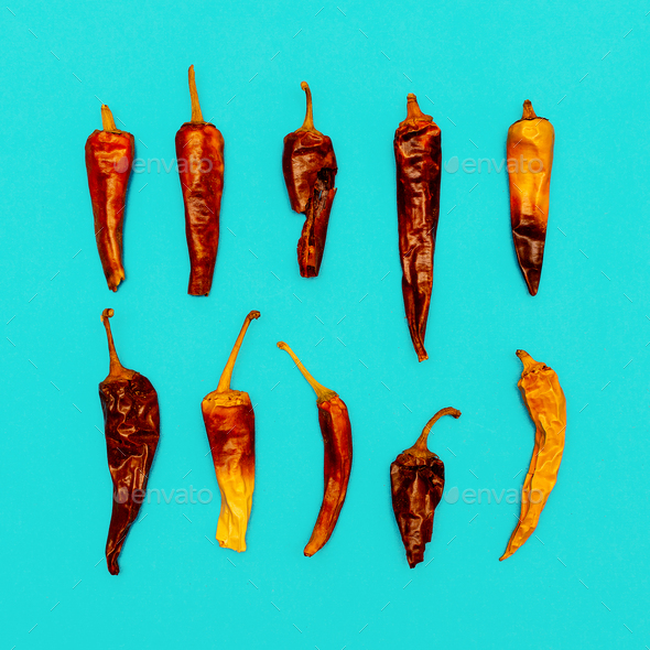 Set of Chile Dried Peppers. Minimal art style - Stock Photo - Images
