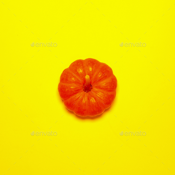 Little pumpkin on a yellow background Minimal style - Stock Photo - Images