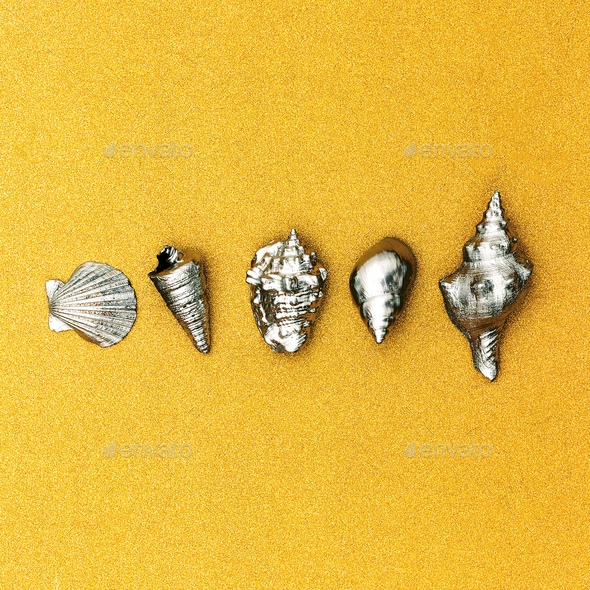 Summer tropical set.  Silver Shells. Minimal. Sea vibes - Stock Photo - Images