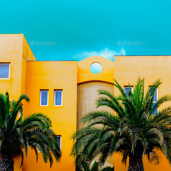 Palm Tropic Location - Stock Photo - Images