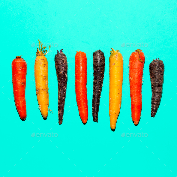 Set carrots. Minimal art design - Stock Photo - Images