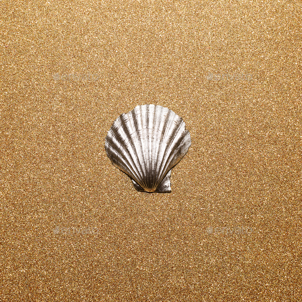 Shell on a gold background. Minimal art - Stock Photo - Images