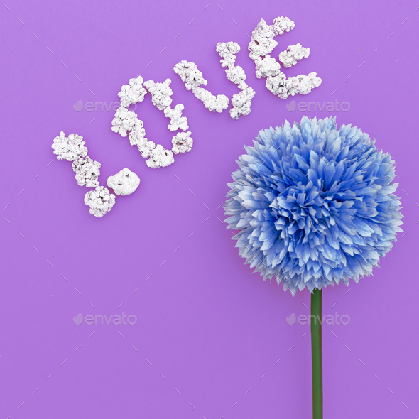 Love flowers. Minimal design art - Stock Photo - Images