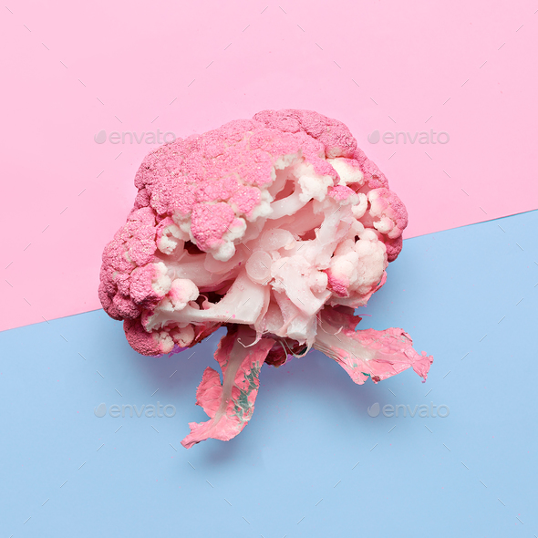 Vegan blog. Cabbage. Art gallery Minimal design creative Surreal - Stock Photo - Images