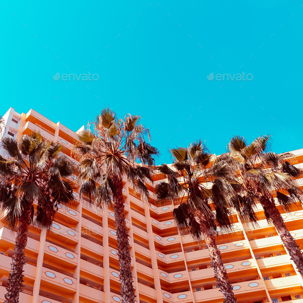 Palms background  and hotel. Minimal. Stylish tropical urban - Stock Photo - Images