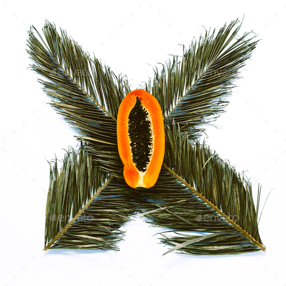 Palm leaves and papaya on white background. Minimal design art - Stock Photo - Images