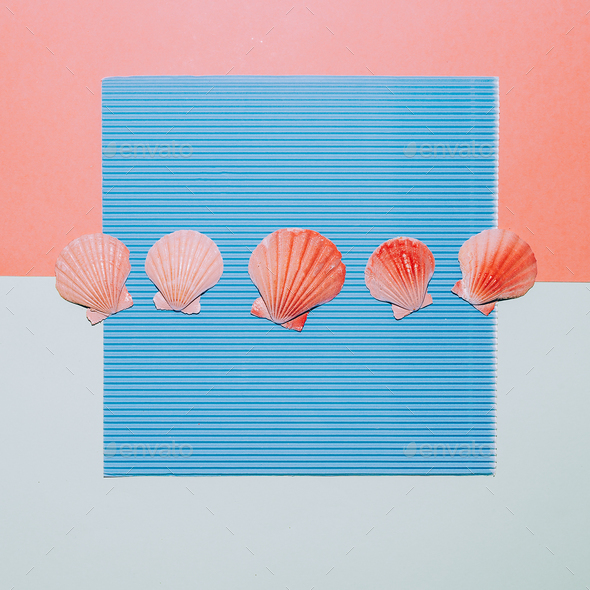 Set shells. Minimal. Sea vibes - Stock Photo - Images