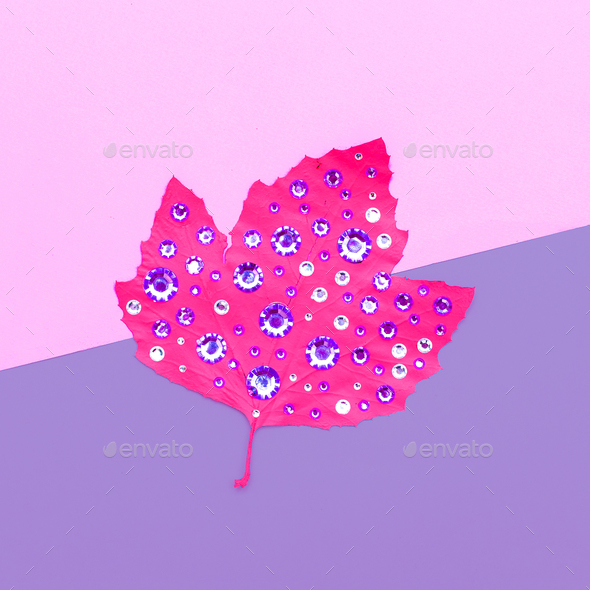 Art gallery. Autumn colored leaf in rhinestones Candy colors - Stock Photo - Images