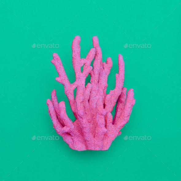 Pink Coral minimal art design - Stock Photo - Images