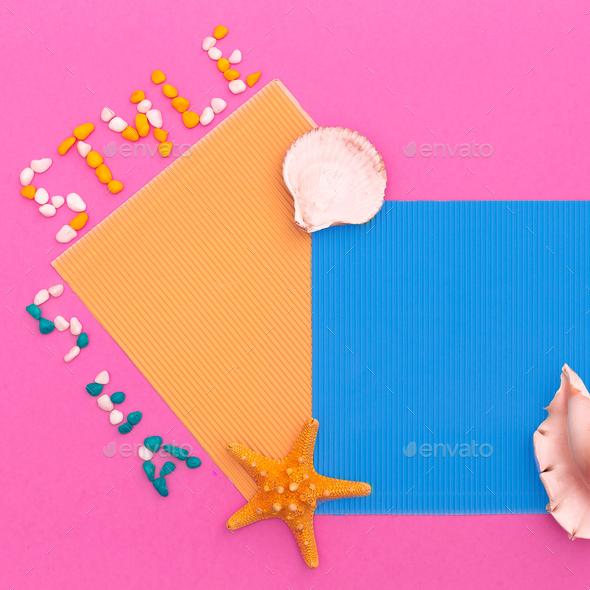Beach style. Shells. Minimal art design - Stock Photo - Images