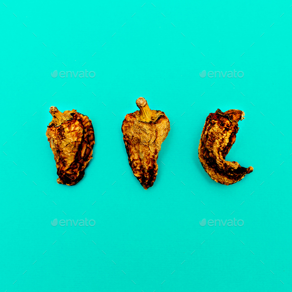 Set of Dried Peppers. Minimal art design - Stock Photo - Images