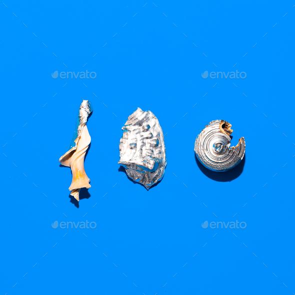 Broken shells set Minimal art design - Stock Photo - Images