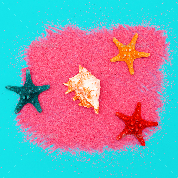Shells and starfish. Ocean concept. Minimal art design Candy Col - Stock Photo - Images