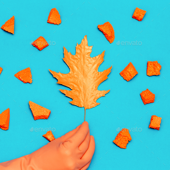 Art gallery. Autumn Colored Leaf and Hand Decor Minimal - Stock Photo - Images