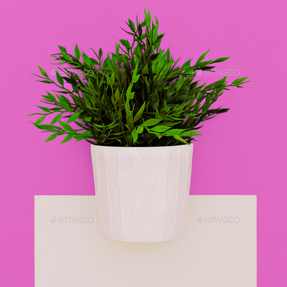Artificial houseplant. Home decor. Minimal art - Stock Photo - Images