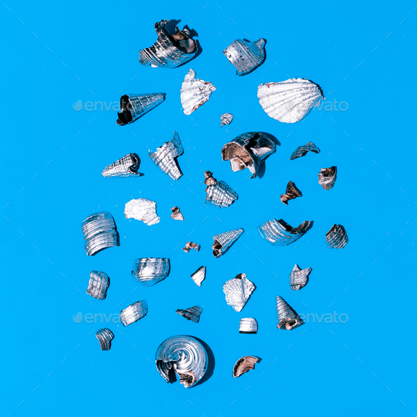 Broken silver shells Minimal art design - Stock Photo - Images