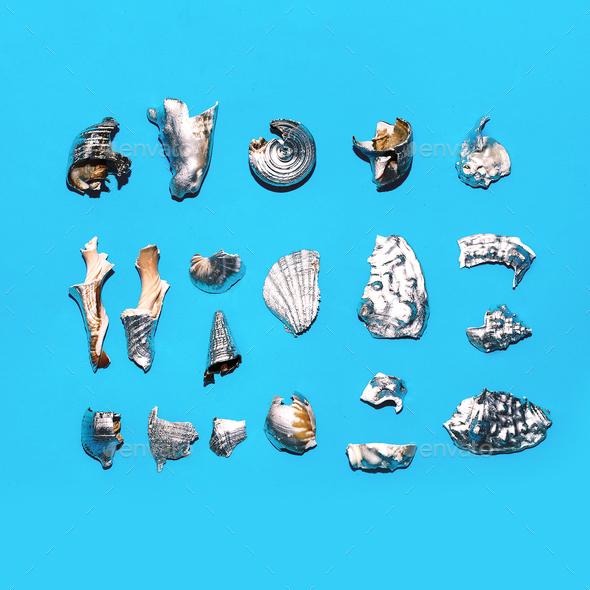 Broken silver shells set Minimal art design - Stock Photo - Images