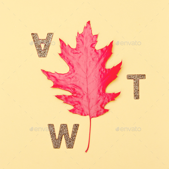 Art gallery Minimal Fall leaf and letters - Stock Photo - Images