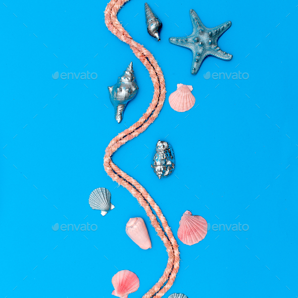 Set art seashells and starfish. Pastel colors. Minimal - Stock Photo - Images