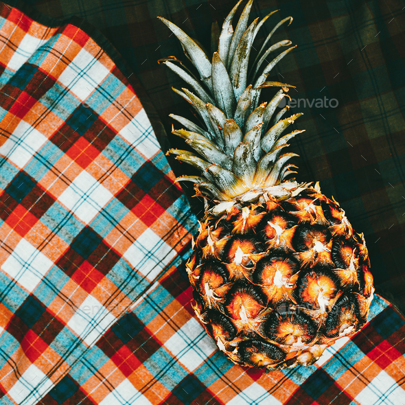 Pineapple on a checked shirt background. Minimal art - Stock Photo - Images