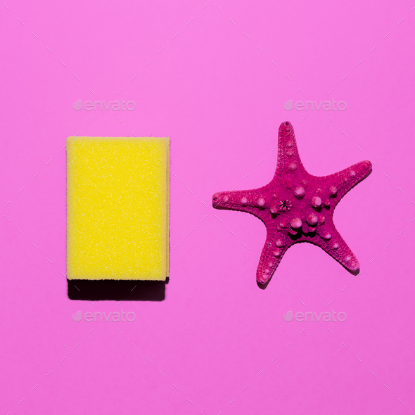 Starfish and sponge. Minimal design. Friendship style - Stock Photo - Images