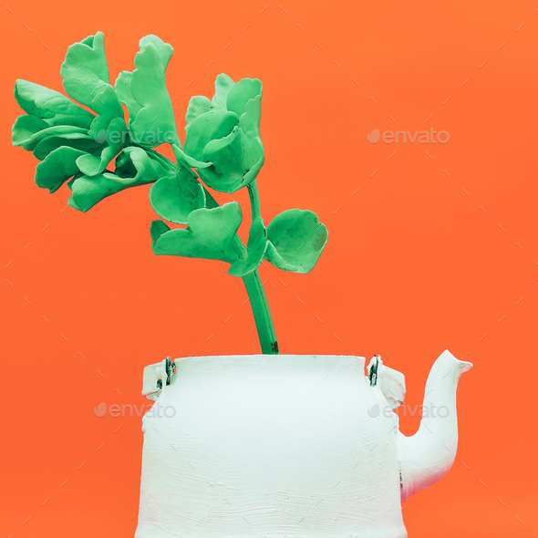 Tropical plant in a teapot. Minimal style design - Stock Photo - Images