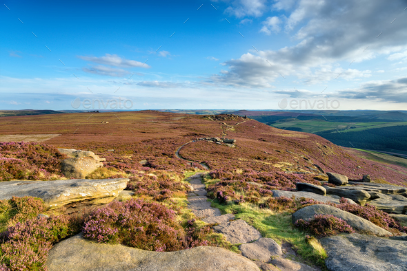 Late Summer on Derwent Edge - Stock Photo - Images