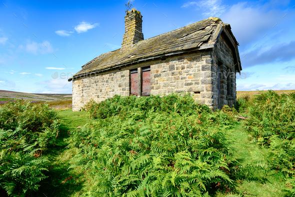 Abandoned Cottage - Stock Photo - Images