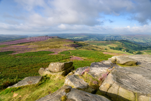 Summer on Higger Tor - Stock Photo - Images