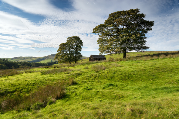 Wildboarclough in the Peak District - Stock Photo - Images