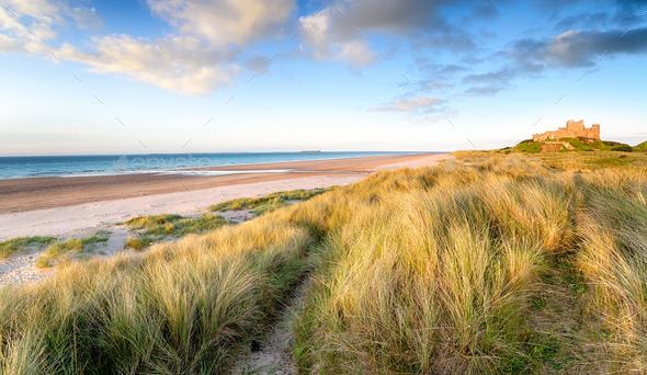 Sand Dunes at Bamburgh - Stock Photo - Images