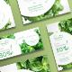 Organic Food Flyers
