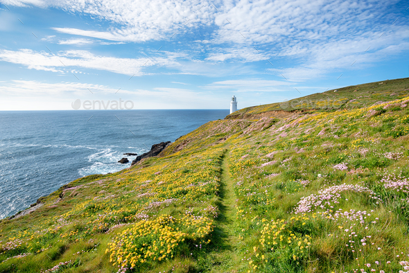 Trevose Head in Cornwall - Stock Photo - Images
