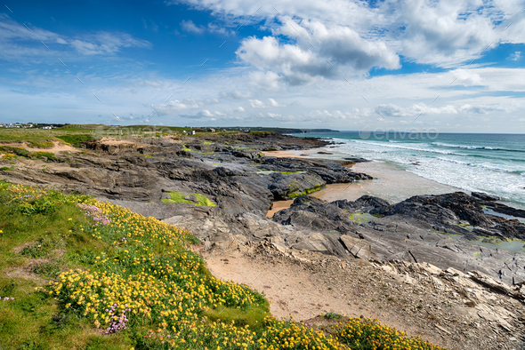 Summer on the Cornwall Coast - Stock Photo - Images