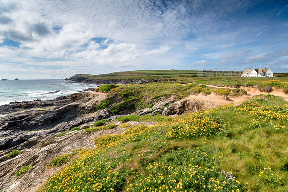 Summer at Boobys Bay in Cornwall - Stock Photo - Images