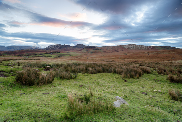 Dawn at Birker Fell in Cumbria - Stock Photo - Images