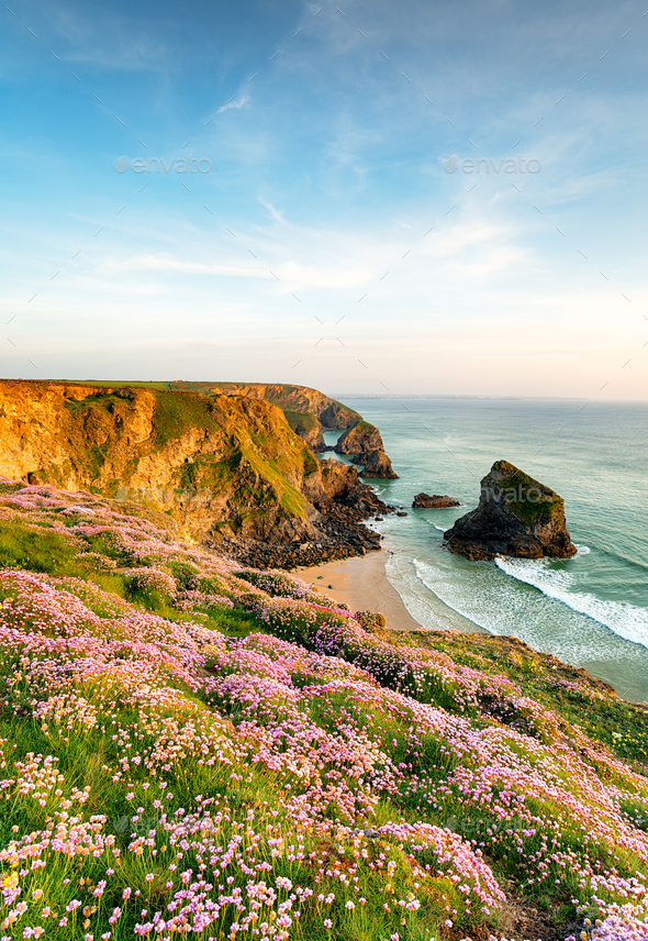 Summer on the Corish Coast - Stock Photo - Images