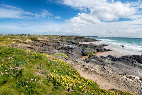 Low Tide at Booby's Bay in Cornwall - Stock Photo - Images