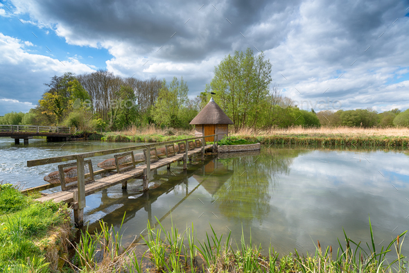The River Test in Hampshire - Stock Photo - Images