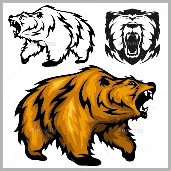 Color Vector Illustration of Grizzly Bear - Animals Characters