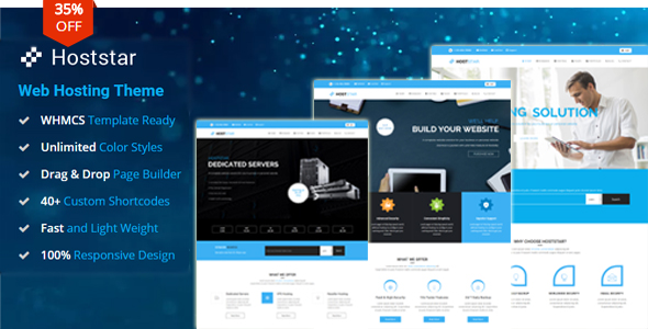 20 Best Hosting WordPress Themes 2019 4