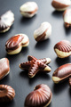 Sweet chocolate seashells. - PhotoDune Item for Sale