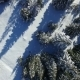 Aerial View of Snowy Winter Forest - VideoHive Item for Sale