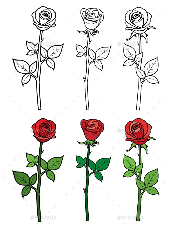 Hand Drawn Outline and Red Roses - Flowers - Miscellaneous Vectors