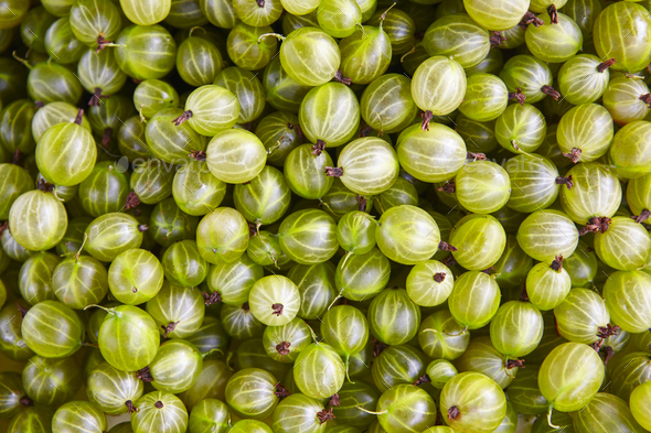 Green grapes detail. Healthy food background. Finland - Stock Photo - Images